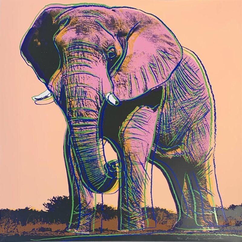 Andy Warhol, 'African Elephant II.293', 1983, Print, Screenprint in colors, on Lenox Museum Board, Upsilon Gallery