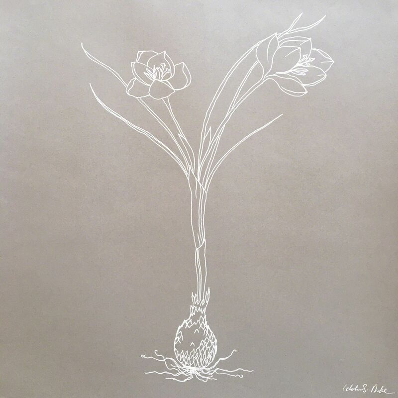 Idoline Duke, 'Crocus line drawing .01', 2019, Drawing, Collage or other Work on Paper, Ink on paper, ARC Fine Art LLC