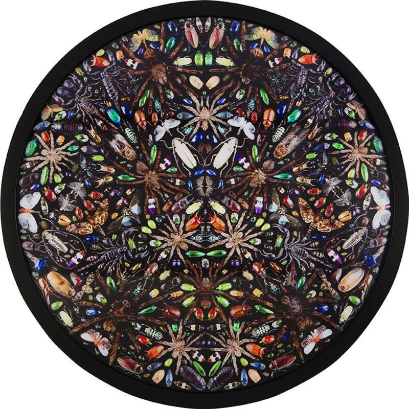 Damien Hirst, 'Phleygas', 2016, Print, Lenticular. Digital print on PETG plastic, The Drang Gallery