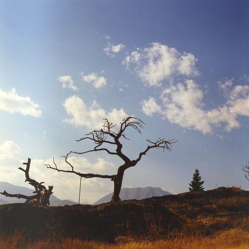 Dianne Bos, 'Alberta 5', 2012, Photography, C-Print, Newzones