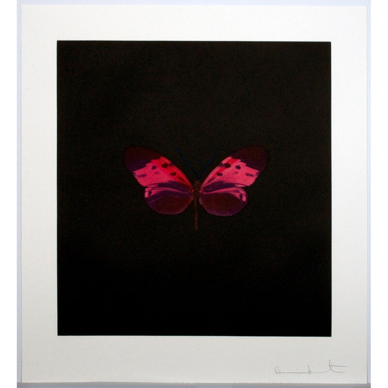 Damien Hirst, 'Pink Butterfly (Memento)', 2008, Print, Etching, Weng Contemporary