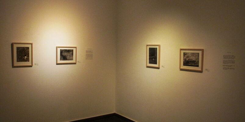 Contemporary Vanitas; Alternative process works, installation view