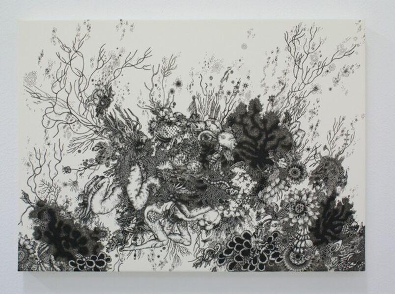 Hitomi Aoki, 'Delusional Fur', 2010
