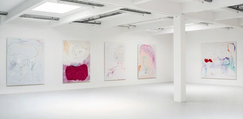 Gonn Mosny, installation view
