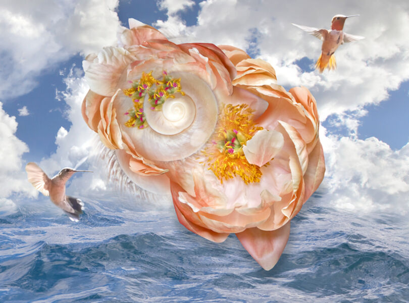 Janice Hathaway, 'Winged Nectar', 2015