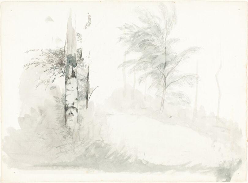 John Ruskin, 'Tree Study'