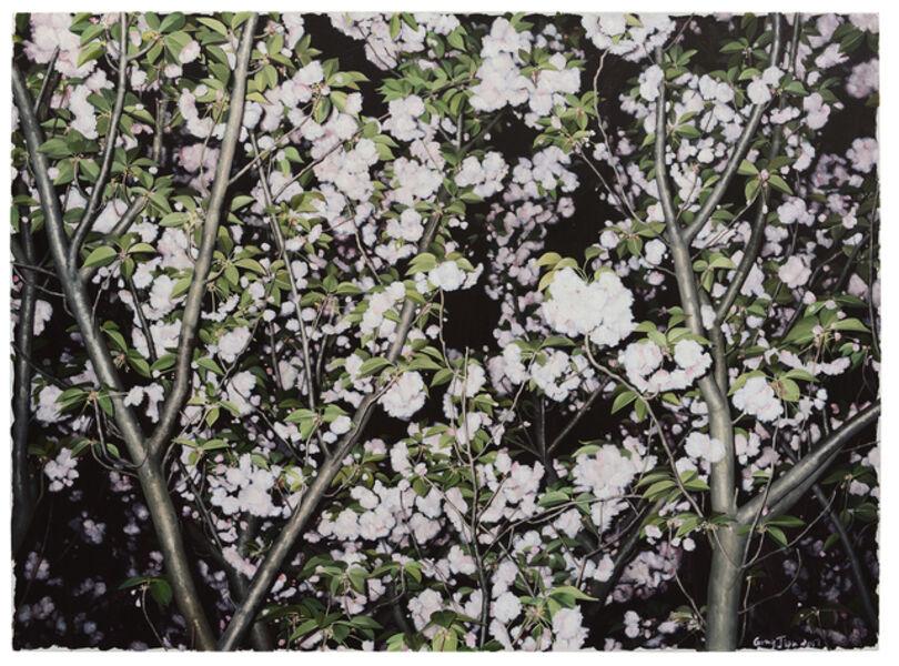 GONG Jian, 'A portrait of a Tree n°2', 2016