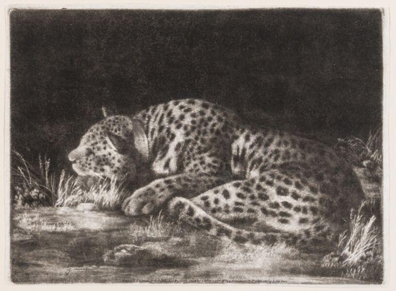 George Stubbs, 'A sleeping cheetah (A Tyger)', 1788