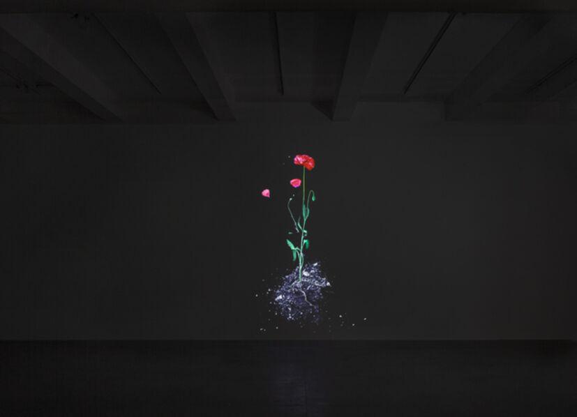 James Coleman (b. 1941), 'Still Life', 2013-2016