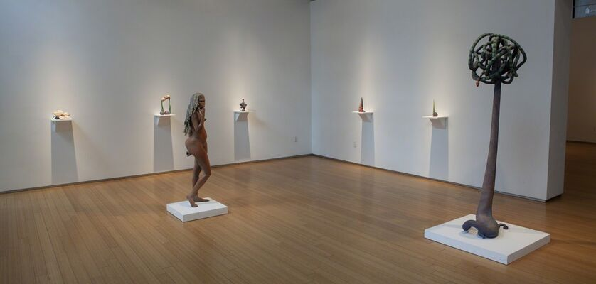 Judy Fox: Garden, installation view