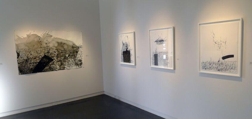 Daniel Diaz-Tai, installation view