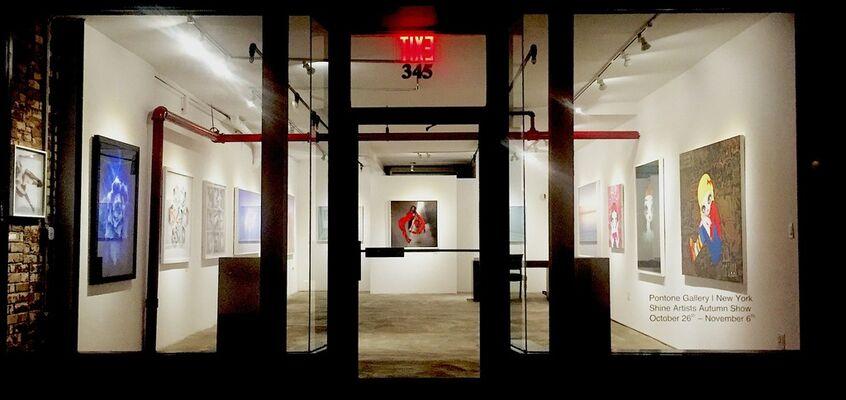 Pontone Gallery   New York   Shine Artists Autumn Show, installation view