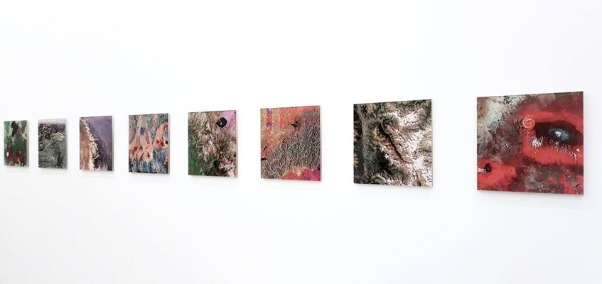 SINAPSI. Giulia Maiorano, installation view