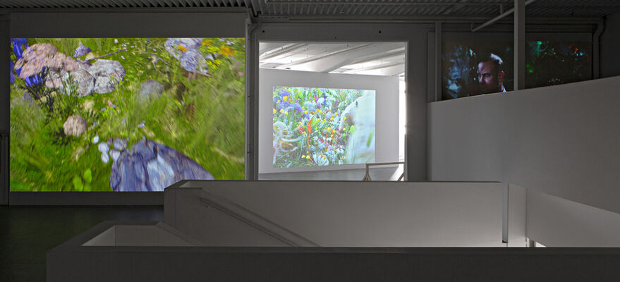 Places of longing, installation view