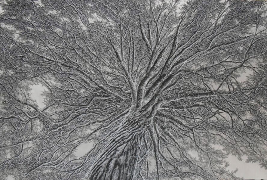 Ellen Wagener, 'Tree of Life', 2019