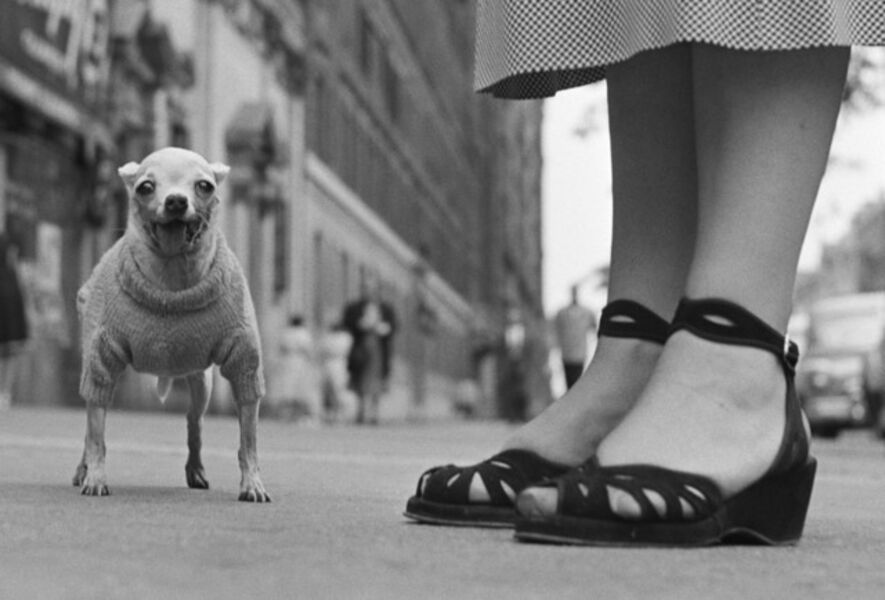 Elliott Erwitt, 'New York City', 1949