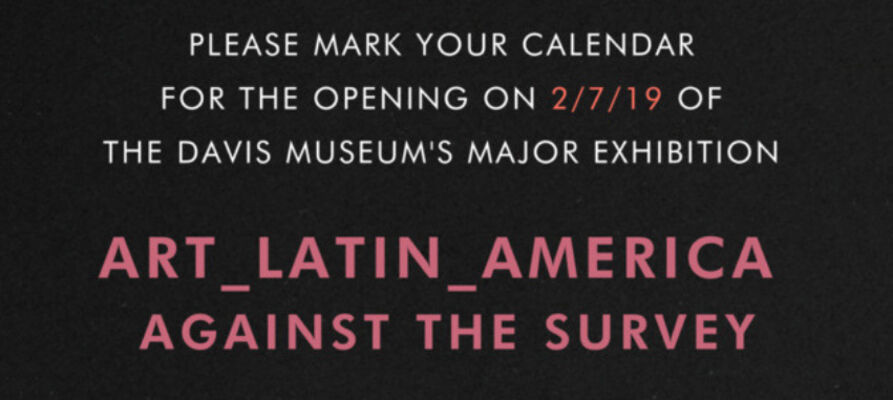 Art_Latin_America: Against the Survey, installation view
