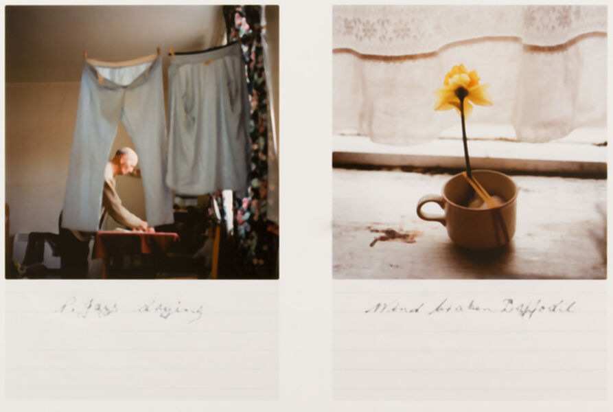 Kaylynn Deveney, 'Dyptych from the Day-to-Day Life of Albert Hastings', 2008