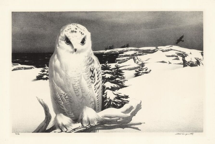 Stow Wengenroth, 'Winter Visitor.  [Greenport, New York.]', 1965