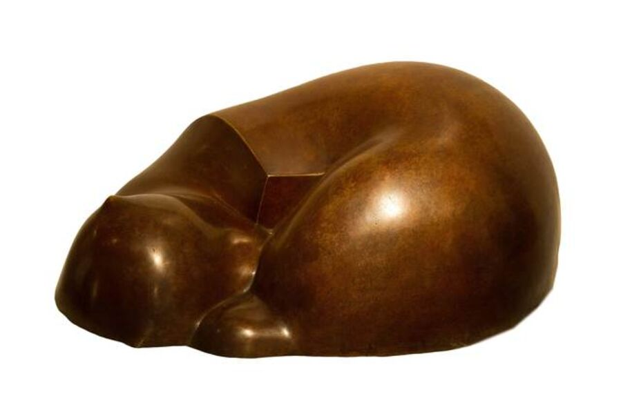 Essam Darwish, 'Sleeping Cat.', ca. 2016