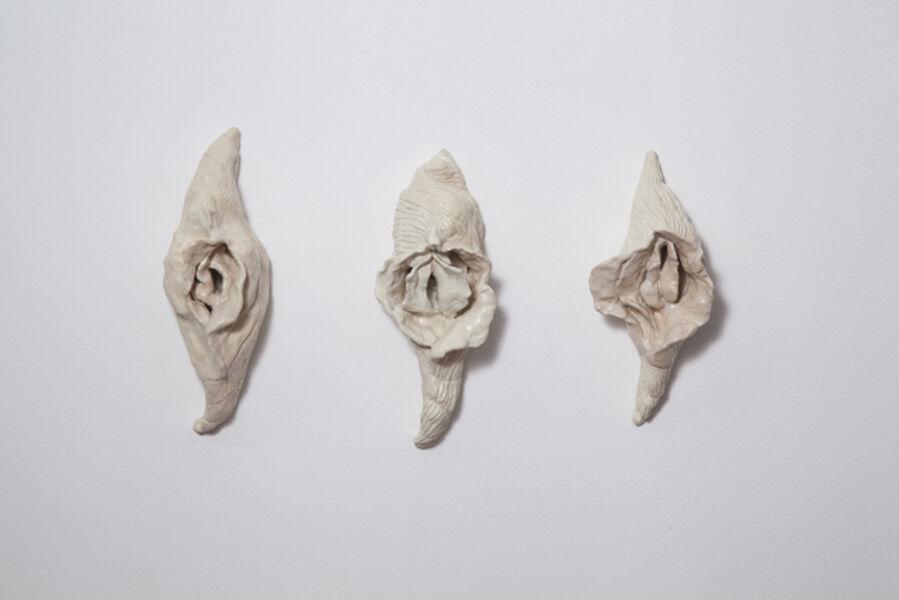 Brígida Baltar, 'Conchas vaginas', 2017