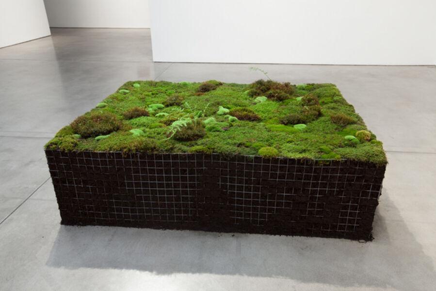 Meg Webster, 'Volume for Lying Flat', 2016