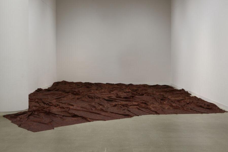 Doris Salcedo, 'A Flor de Piel', 2014