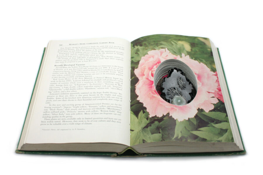 Sondra Sherman, 'Found Subjects:  Woman's Home Companion, Brooch'
