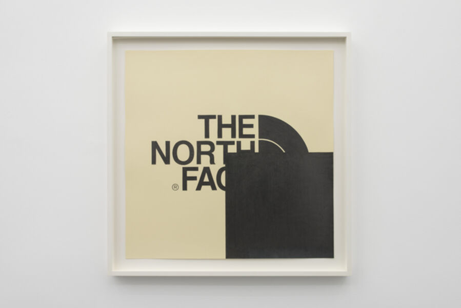 Mathew Cerletty, 'The North Face', 2010