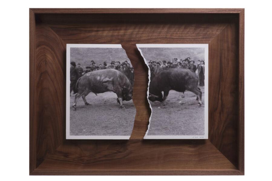 Cai Dongdong, 'Bullfighting', 2018