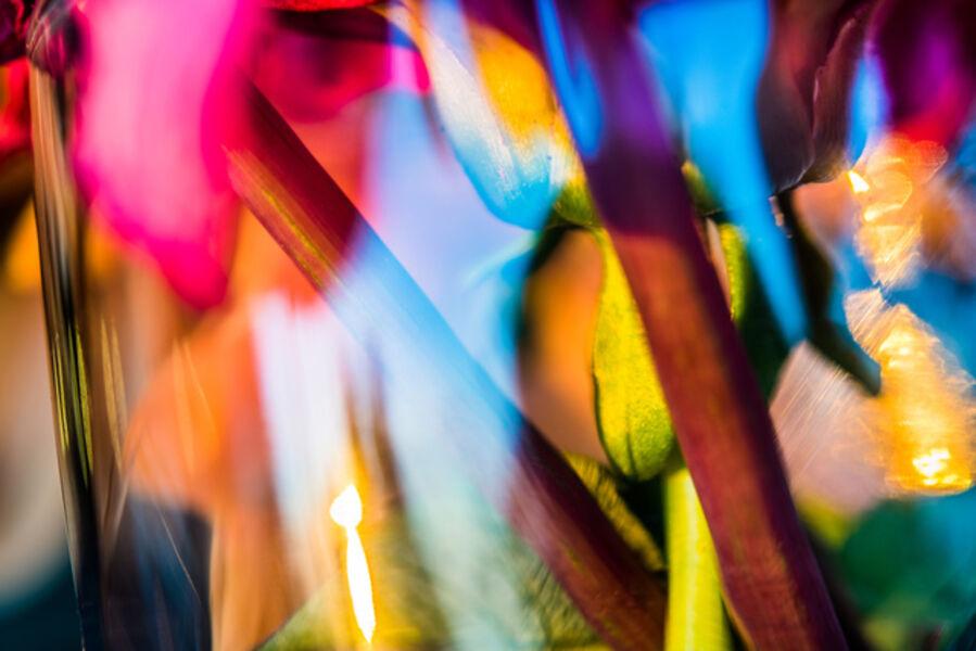 John Mazlish, 'Flower Sunset Abstract'