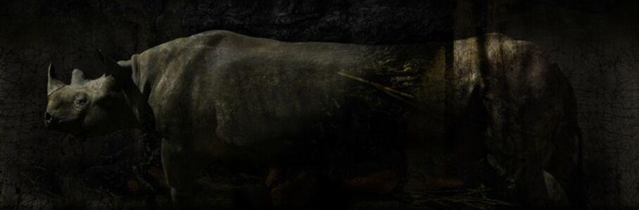 Toru Tanno, 'Subterranean †rhinoceros', 2013