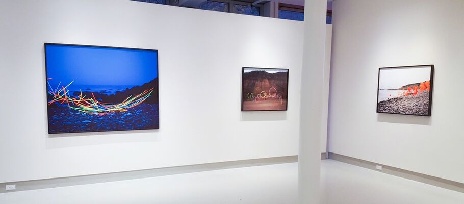 Emergent Behavior, installation view