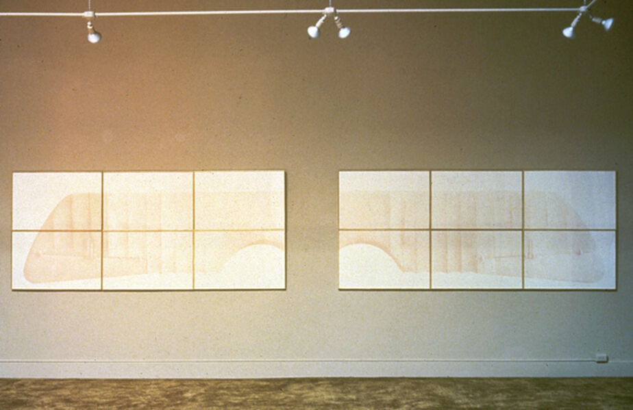 Vito Acconci, '2 Wings For Wall And Person', 1979