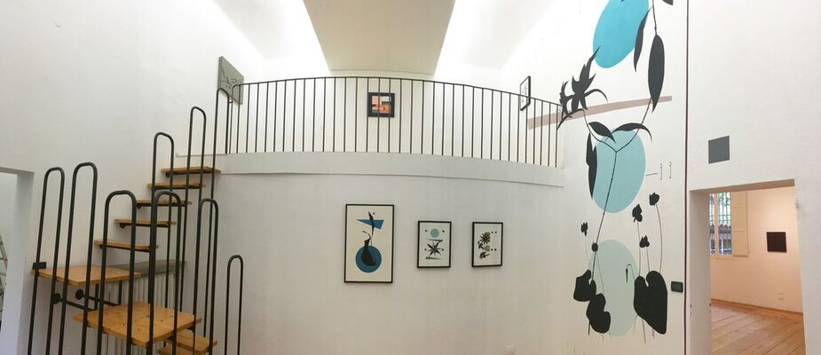 ABSTRACT NOW!, installation view