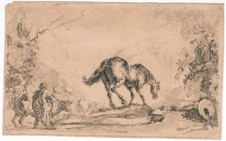 """Stefano Della Bella, 'Free Horse, from """"Diversi capricci""""', ca. 1650"""