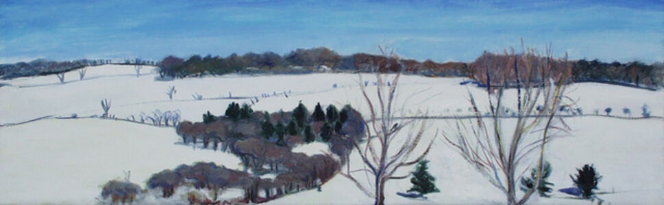 Temma Bell, 'Snowy Fields, Delhi', 2003