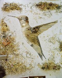 Hummingbird (Scrap Metal)