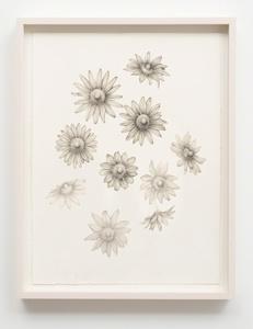Untitled (Nipple Flowers)