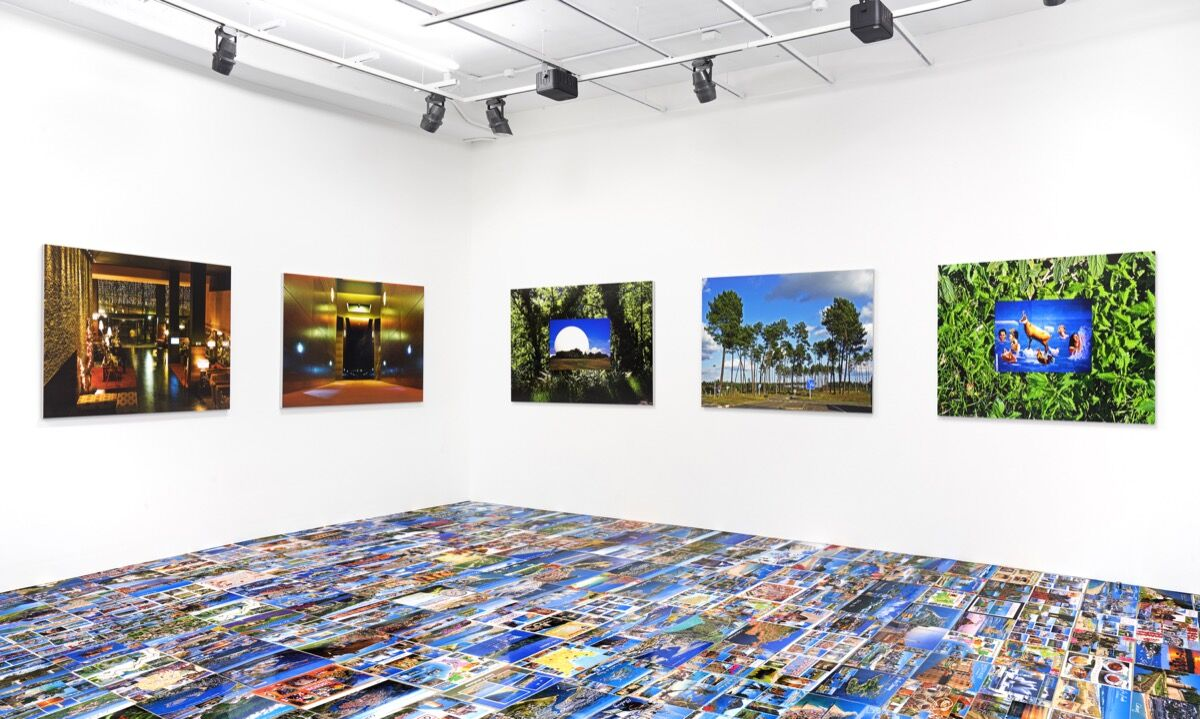 """Installation view of """"Michel Houellebecq: French Bashing."""" Courtesy of Venus."""