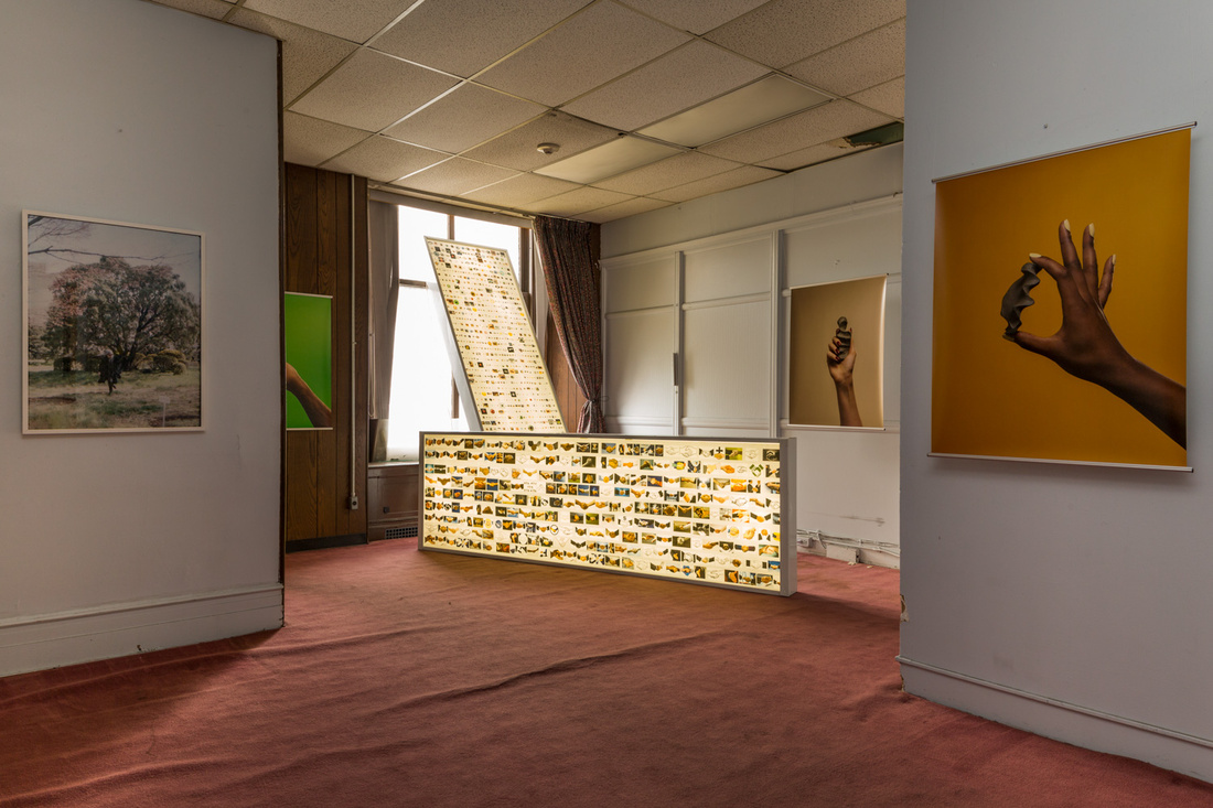 Gone, group exhibition, curated by Teriha Yaegashi + Patrick Meagher. Image courtesy of Samuel Morgan Photography.