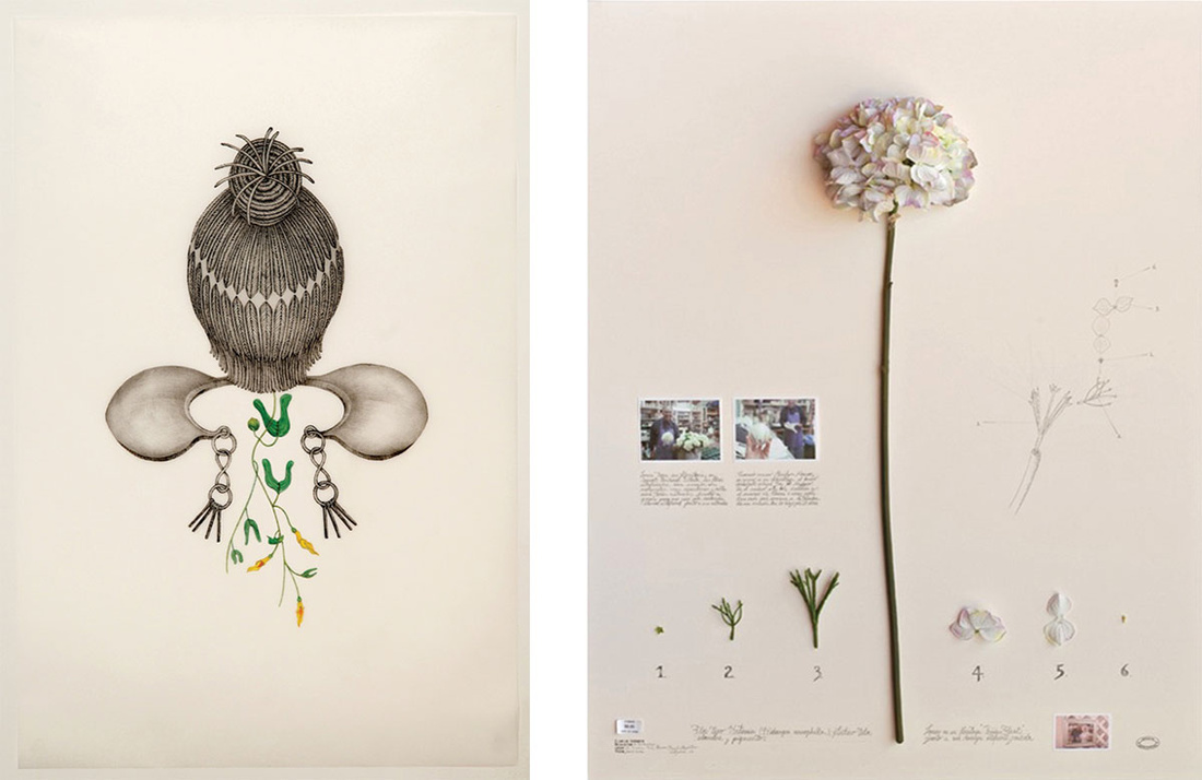"Left: Joscelyn Gardner, Aristolochia bilobala (Nimine), 2010, from the series ""Creole Portraits III"" (2009-2011). Image courtesy of apexart. Right: Alberto Baraya, California Expedition: Hortensia Monroe, 2012, from the series ""Herbarium of Artificial Plants"" (2001-present). Image courtesy of apexart."