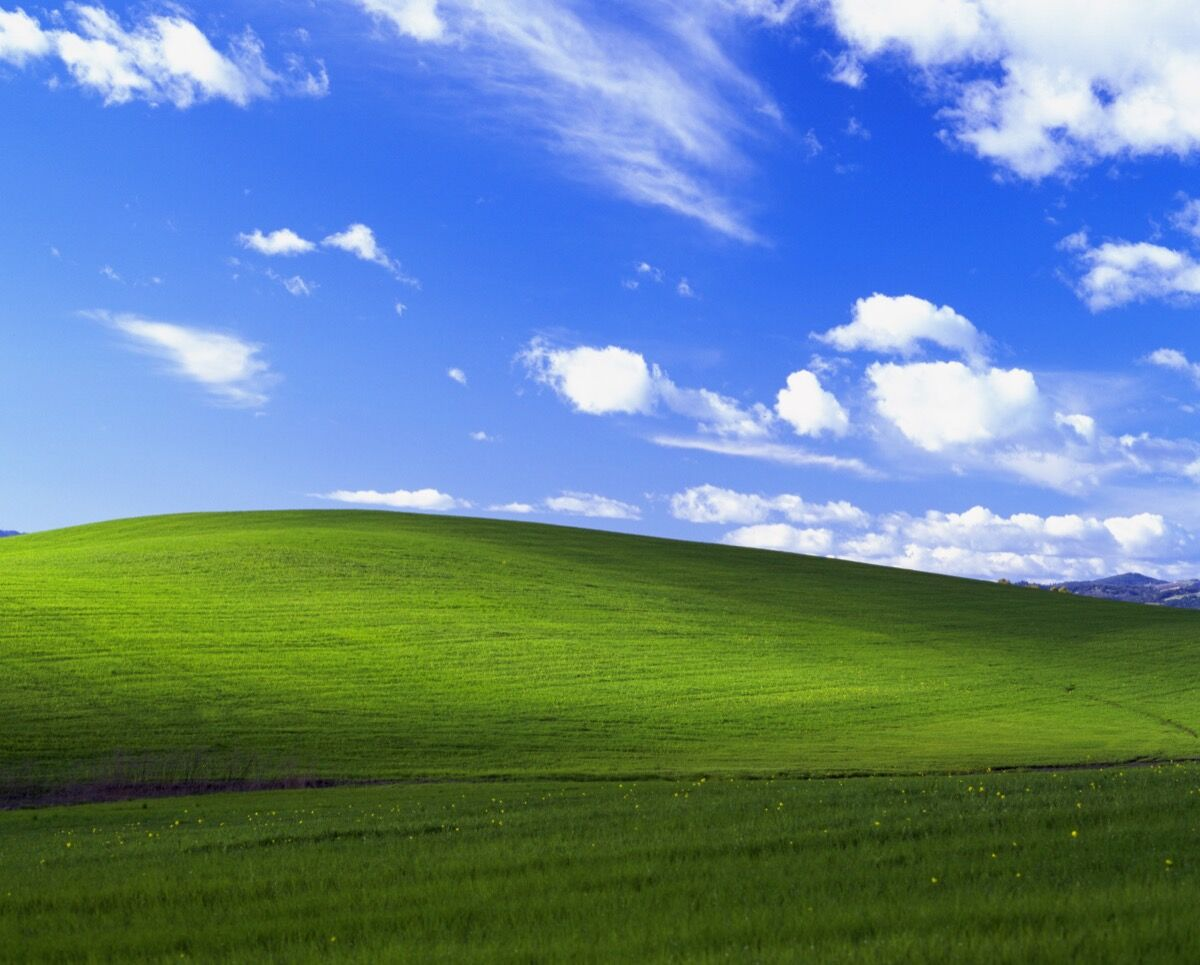 Windows XP Background, Bliss. Photo by Charles O'Rear. Used with permission from Microsoft.