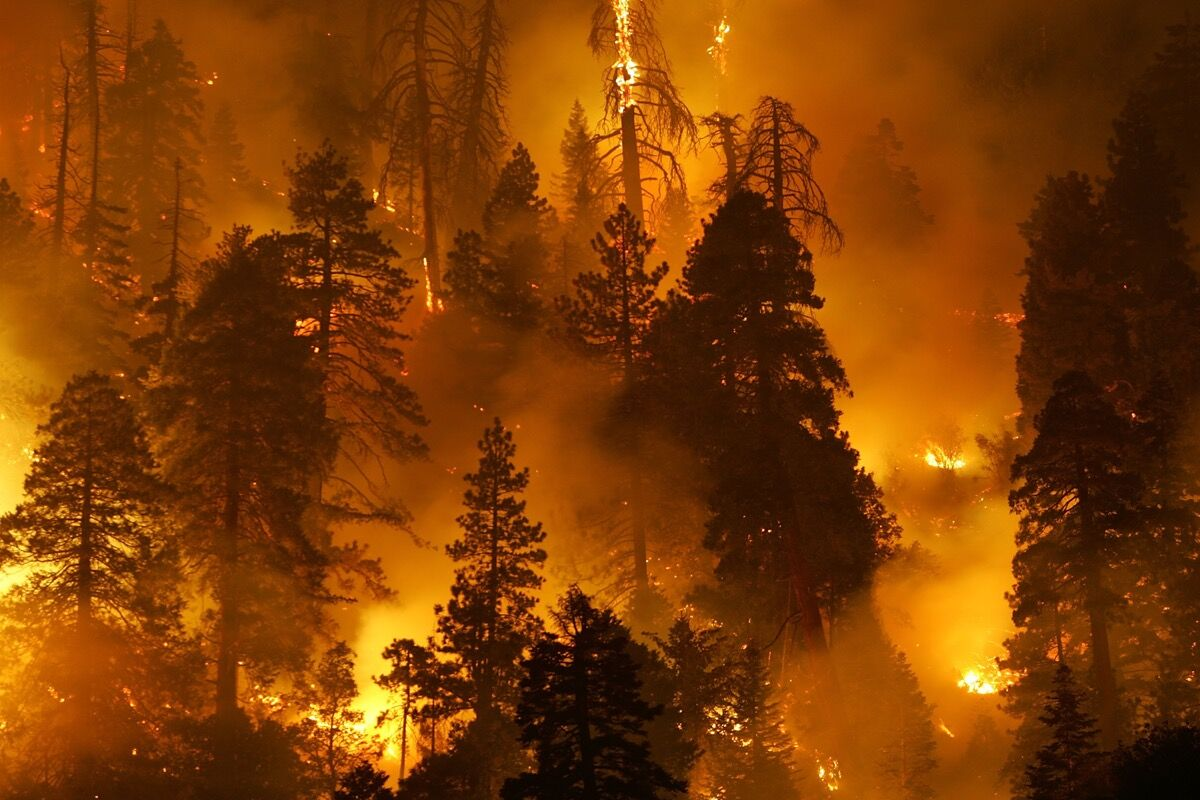 The Butler 2 Fire, Fawnskin, CA, September 2007. Photo by David McNew/Getty Images.