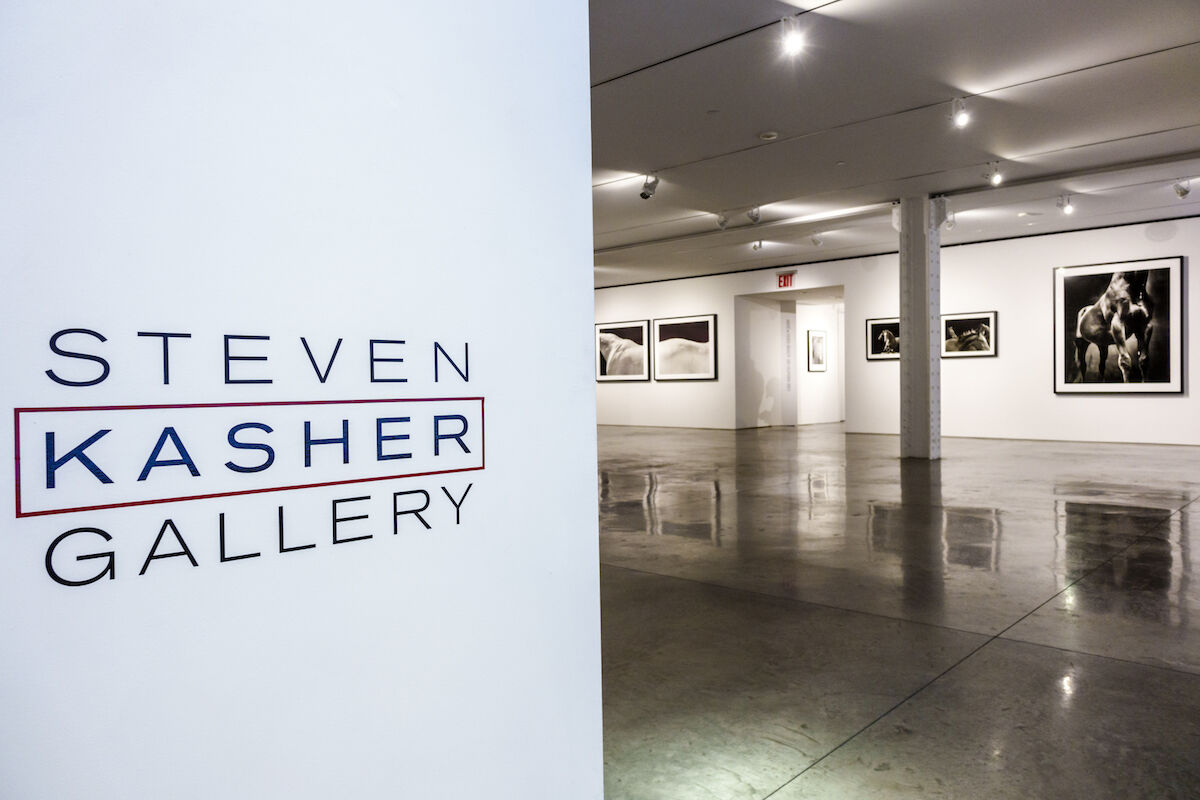 Steven Kasher Gallery, which will close at the end of 2018. Photo by Jeffrey Greenberg/UIG via Getty Images.