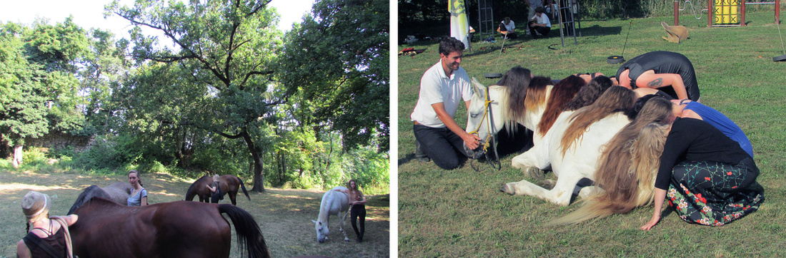 Activities fromHorse and Art Residency 2015. Courtesy of Horse and Art Residency.