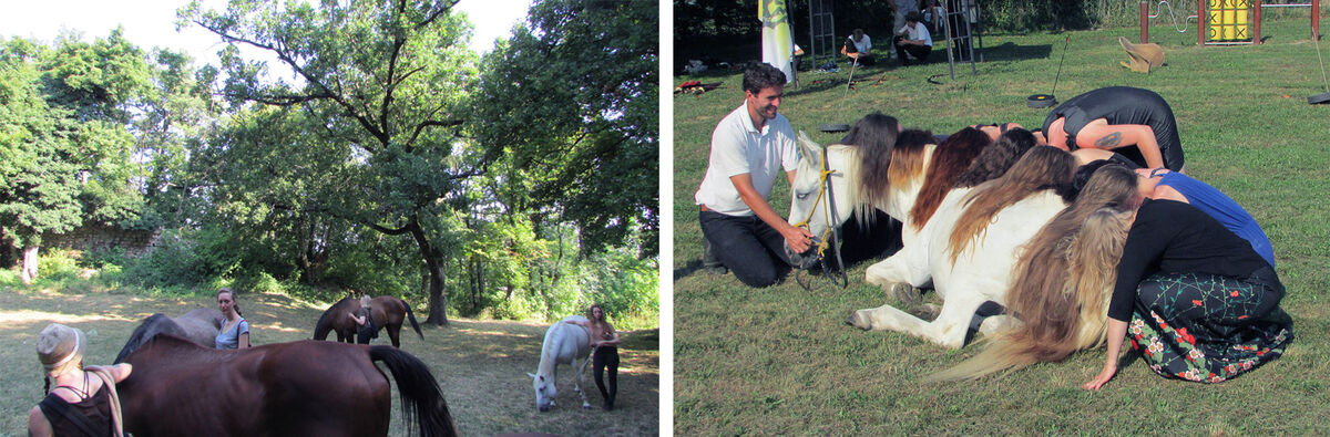 Activities from Horse and Art Residency 2015. Courtesy of Horse and Art Residency.