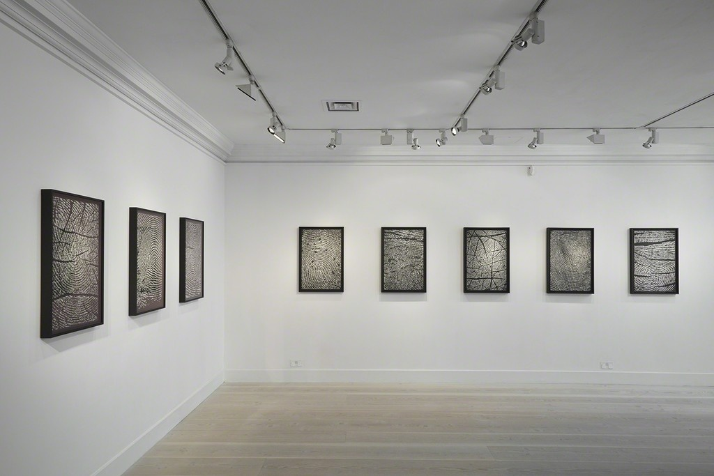 "Installation view of ""Alinka Echeverría 