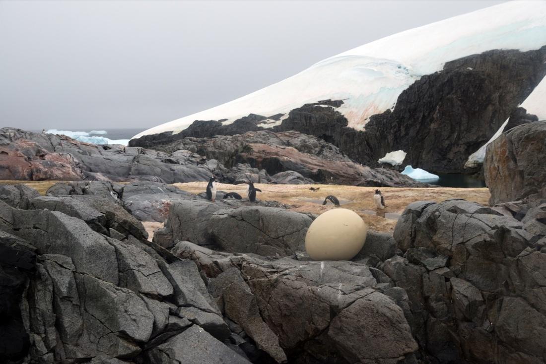 Work by Zhang Enli. Courtesy of Antarctic Biennale.