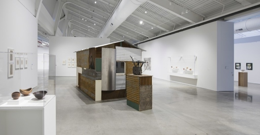 """Installation view of """"Architecture of Life"""" at UC Berkeley Art Museum and Pacific Film Archive, Berkeley (2016). Courtesy of the museum."""